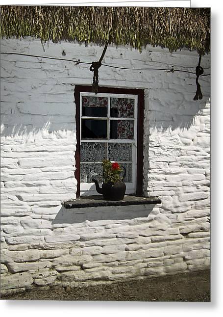 Irish Kettle Of Geraniums County Cork Ireland Greeting Card by Teresa Mucha