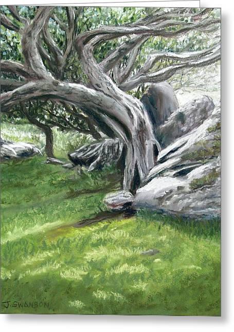 Irish Tree Ring Of Kerry Greeting Card by Joan Swanson