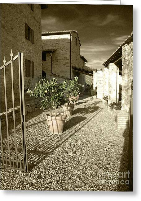 Iron Gate At Collelungo Greeting Card