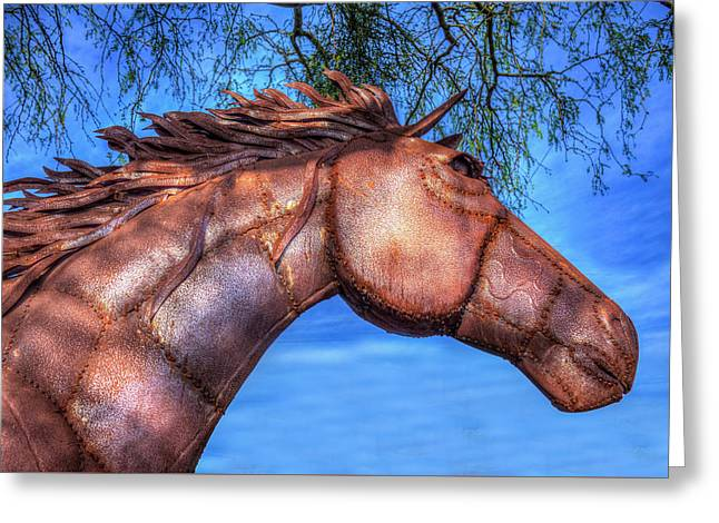 Greeting Card featuring the photograph Iron Horse by Paul Wear