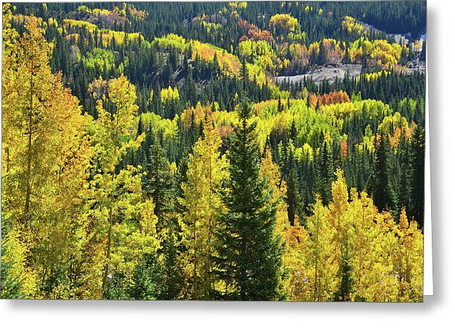 Greeting Card featuring the photograph Ironton Fall Color by Ray Mathis