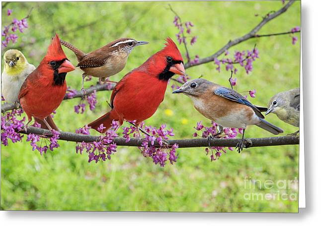 Greeting Card featuring the photograph Is It Spring Yet? by Bonnie Barry