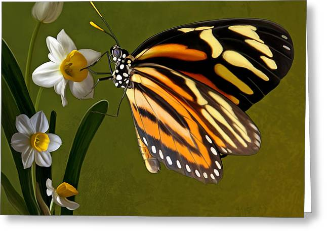 Isabella Tiger Butterfly Greeting Card