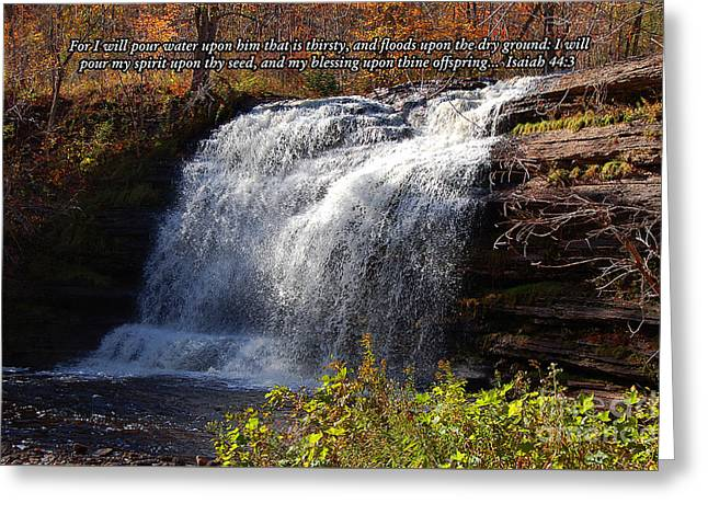 Isaiah 44 Greeting Card by Diane E Berry