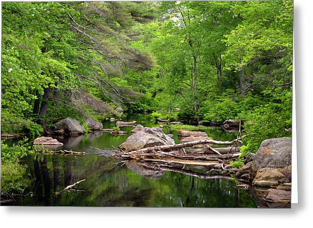 Isinglass River, Barrington, Nh Greeting Card