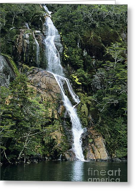Isla Hoste Waterfall Greeting Card by Larry Dale Gordon - Printscapes