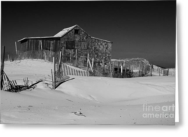 Island Beach State Park The Judges Shack Greeting Card by Paul Ward