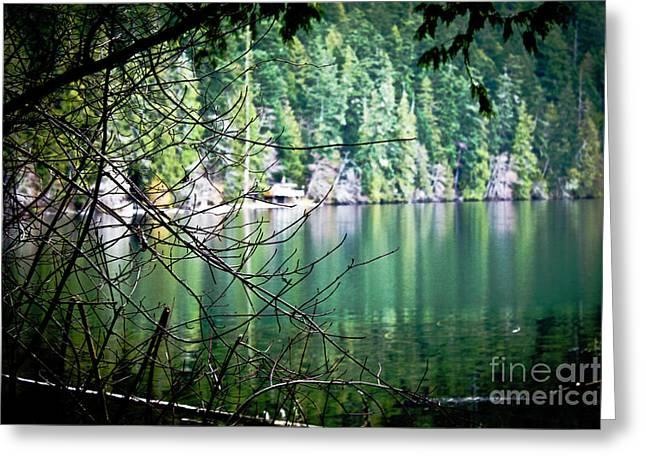 Island Lake Vignette Greeting Card