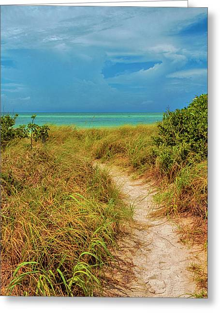 Island Path Greeting Card by Swank Photography
