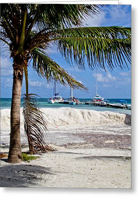 Island Scene Greeting Card by Mamie Thornbrue