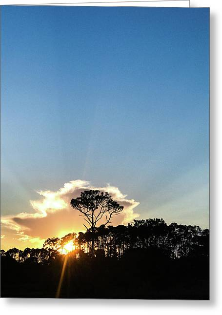 Greeting Card featuring the photograph Island Sunset by Whitney Leigh Carlson