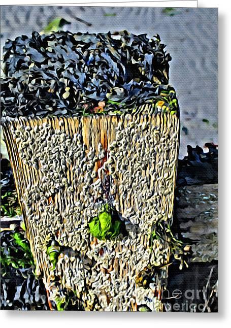 Isle Of Man Low Tide Greeting Card