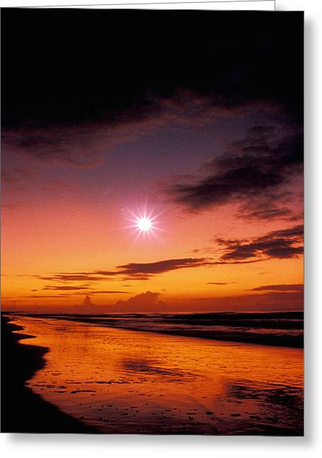 Isle Of Palms Greeting Card by Gerard Fritz