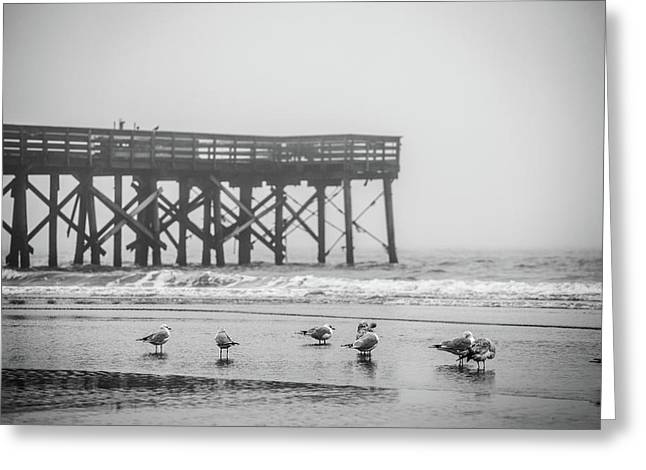 Isle Of Palms Pier And Fog Greeting Card