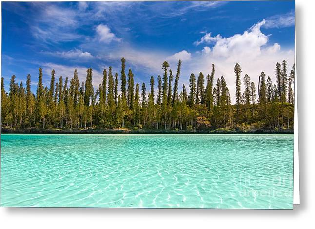 Isle Of Pines Greeting Card by Delphimages Photo Creations