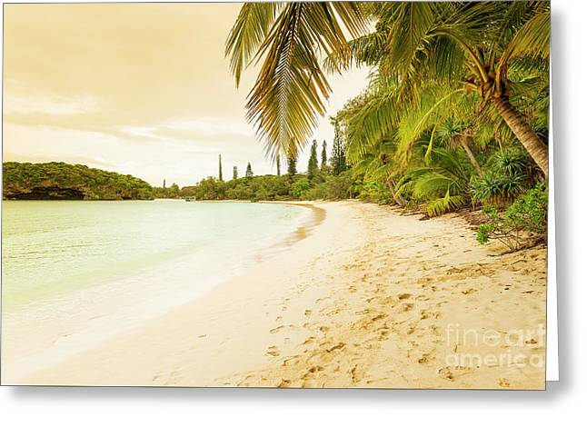 Isle Of Pines Greeting Card by Tim Hester