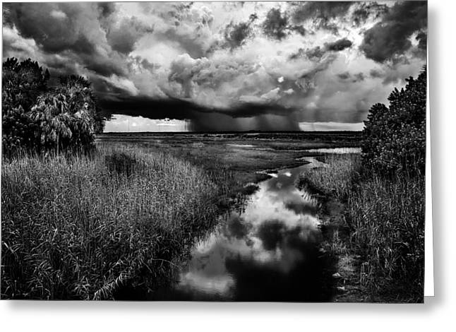 Monochrome Greeting Cards - Isolated Shower - BW Greeting Card by Christopher Holmes