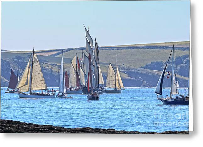 It Got A Bit Busy Greeting Card by Terri Waters