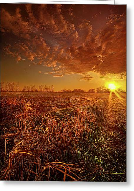 It Just Is Greeting Card by Phil Koch