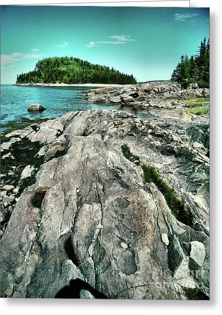 Greeting Card featuring the photograph It Rocks  by Aimelle