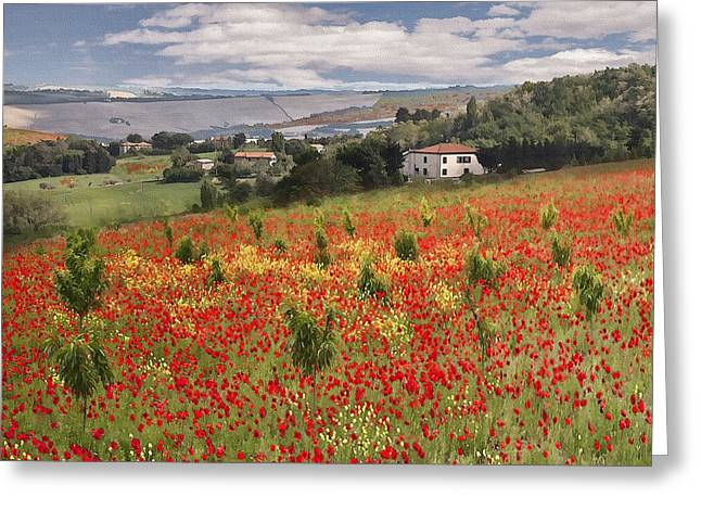 Italian Poppy Field Greeting Card