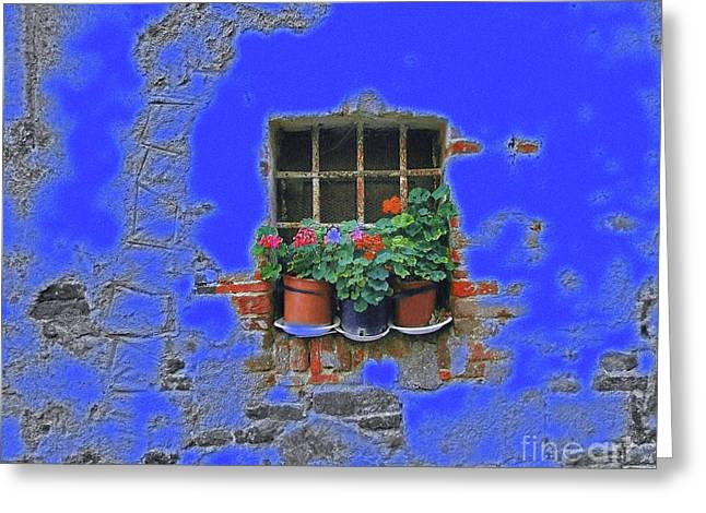 Italian Wallflowers Greeting Card by Karen Lewis