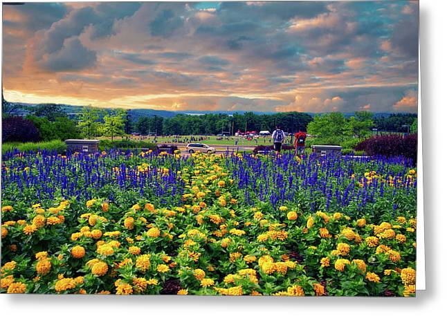 Ithaca College Ithaca New York Floral 03 Greeting Card