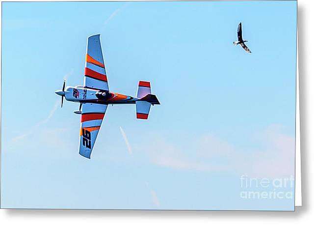 It's A Bird And A Plane, Red Bull Air Show, Rovinj, Croatia Greeting Card