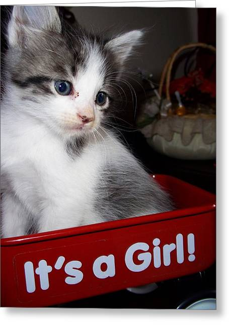 Its A Girl Greeting Card by Janell Calori