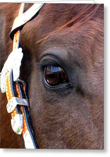 It's In The Eye Greeting Card by Sabina Haas