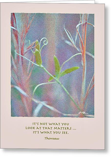 It's Not What You Look At Greeting Card by Claudia O'Brien