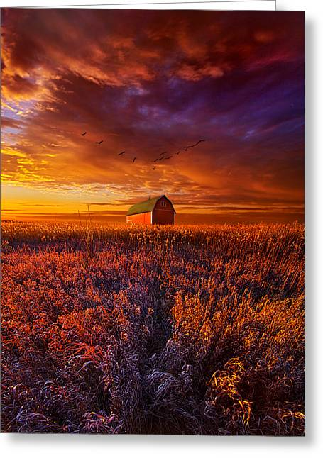 It's The Fire And The Wings That Fly Us Home Greeting Card by Phil Koch