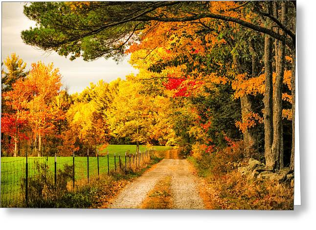 Greeting Card featuring the photograph I've Got Sunshine On A Cloudy Day by Robert Clifford