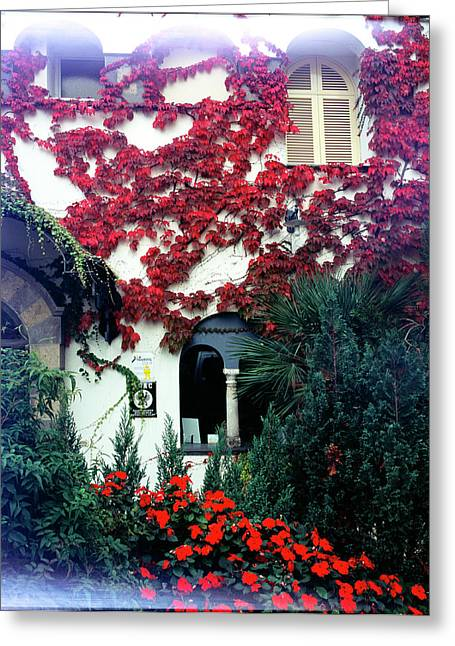 Ivy Flames Ravello Italy Greeting Card by Martin Sugg
