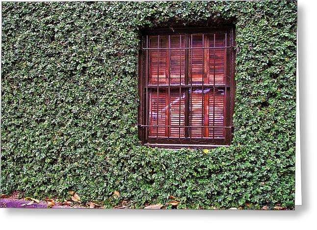 Ivy House Greeting Card by JAMART Photography