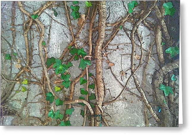 Ivy Network Texture Greeting Card