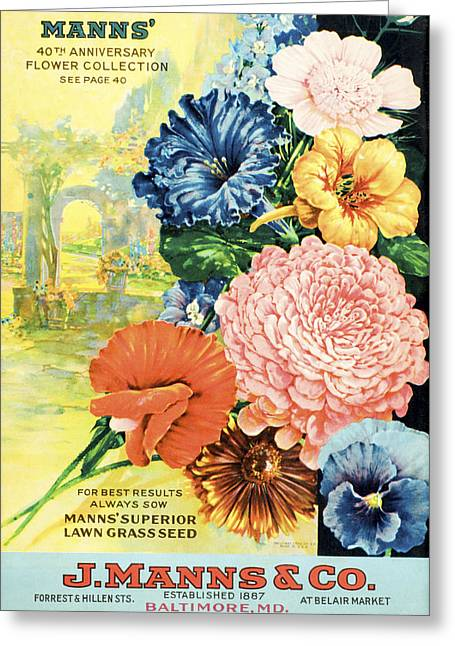 J. Manns Seed Catalog With Illustration Greeting Card