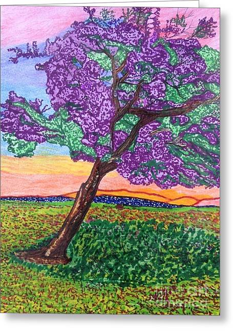Jacaranda Bloom Greeting Card