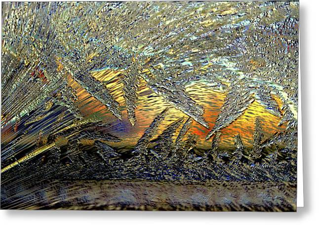 Greeting Card featuring the photograph Jack Frost Paintin On My Window by Irma BACKELANT GALLERIES