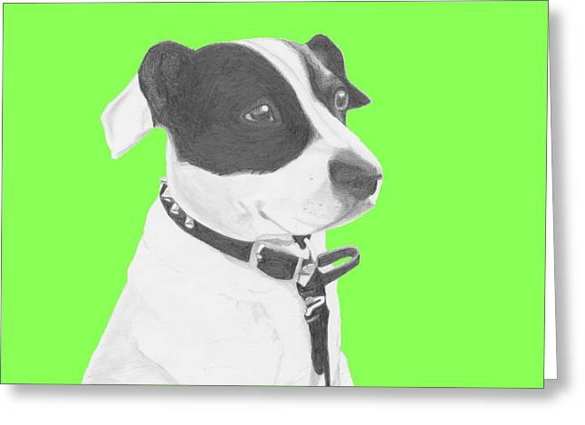 Jack Russell Crossbreed In Green Headshot Greeting Card