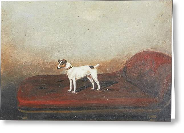 Jack Russell Terrier Standing Greeting Card