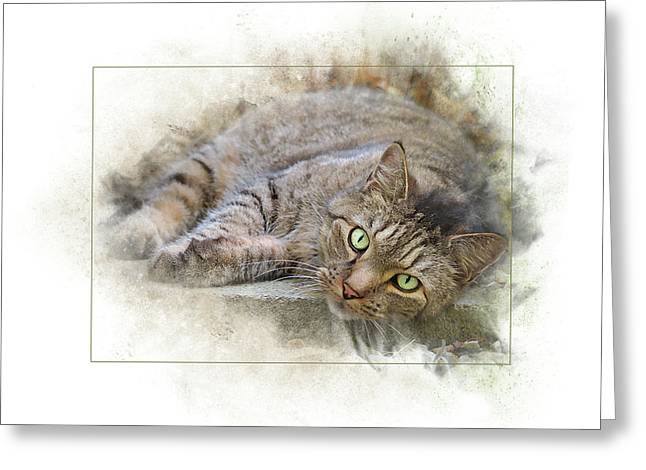 Greeting Card featuring the digital art Jack by Sue Collura