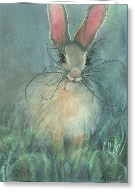 Jack-the-rabbit Greeting Card by Anne Havard