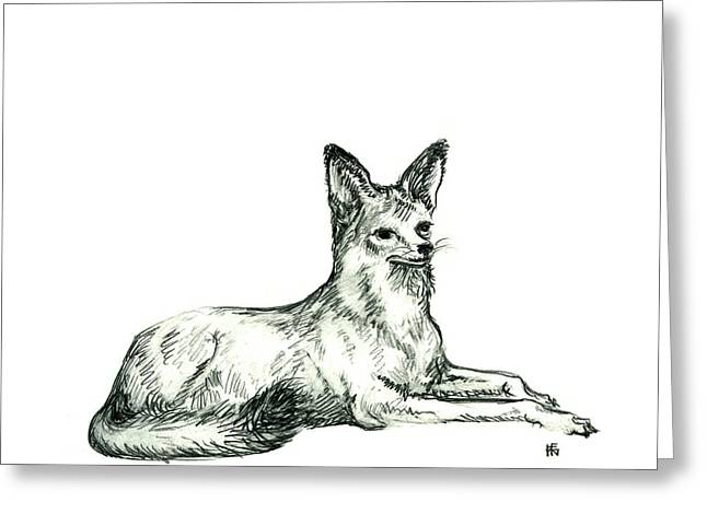 Jackal Sketch Greeting Card