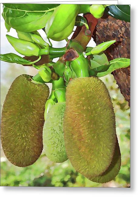 Jackfruit Greeting Card by Lanjee Chee