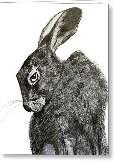 Jackrabbit Jock Greeting Card by Linde Townsend
