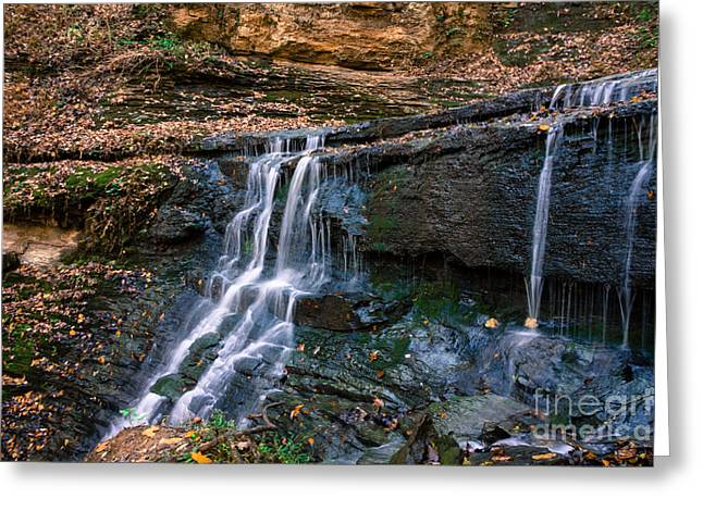 Jackson Falls - Natchez Trace Greeting Card by Debra Martz