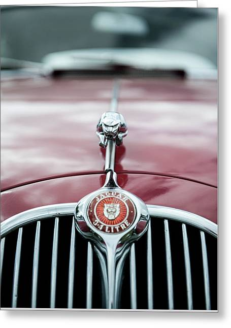 Jaguar Grille Greeting Card by Helen Northcott