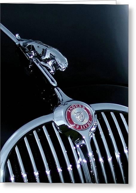 Jaguar Hood Ornament Greeting Card