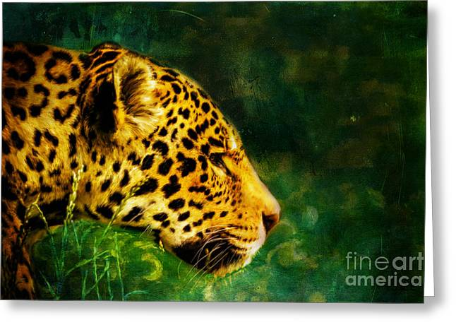 Jaguar In The Grass Greeting Card